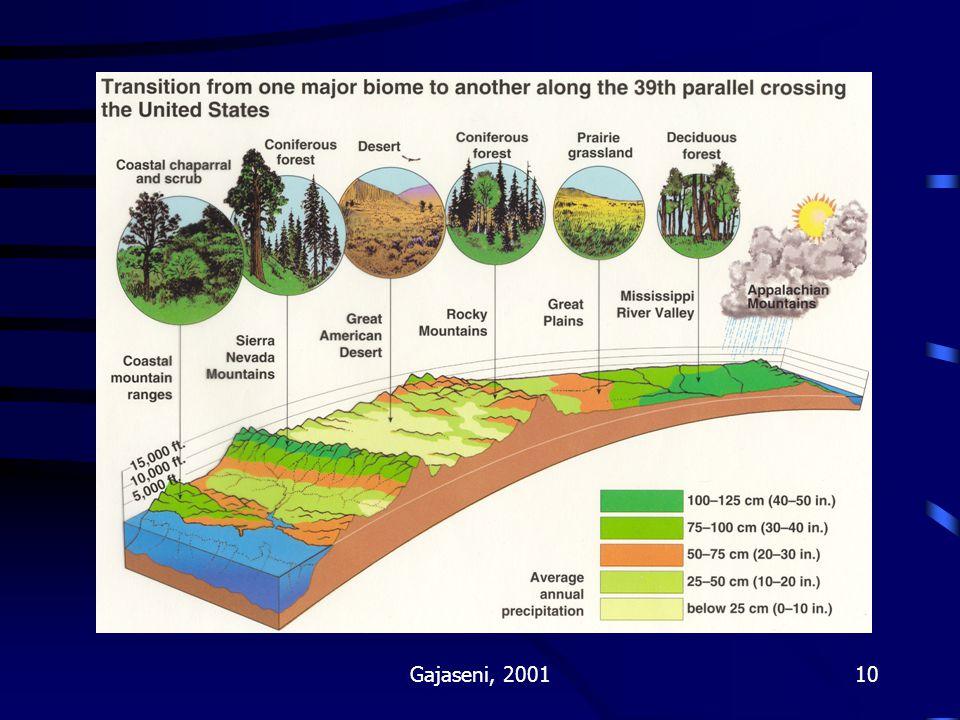 Fig 111-4 Gajaseni, 2001