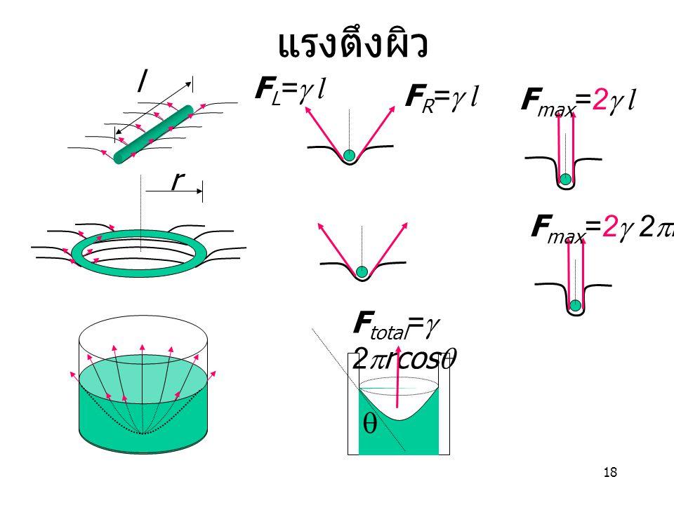 แรงตึงผิว l FR=g l FL=g l Fmax=2g l r Fmax=2g 2pr Ftotal=g 2prcosq q
