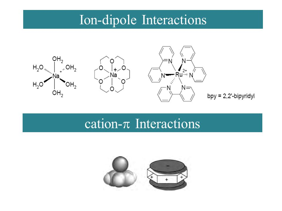 Ion-dipole Interactions