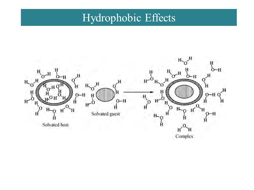 Hydrophobic Effects