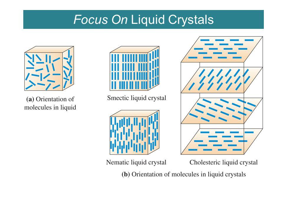 Focus On Liquid Crystals