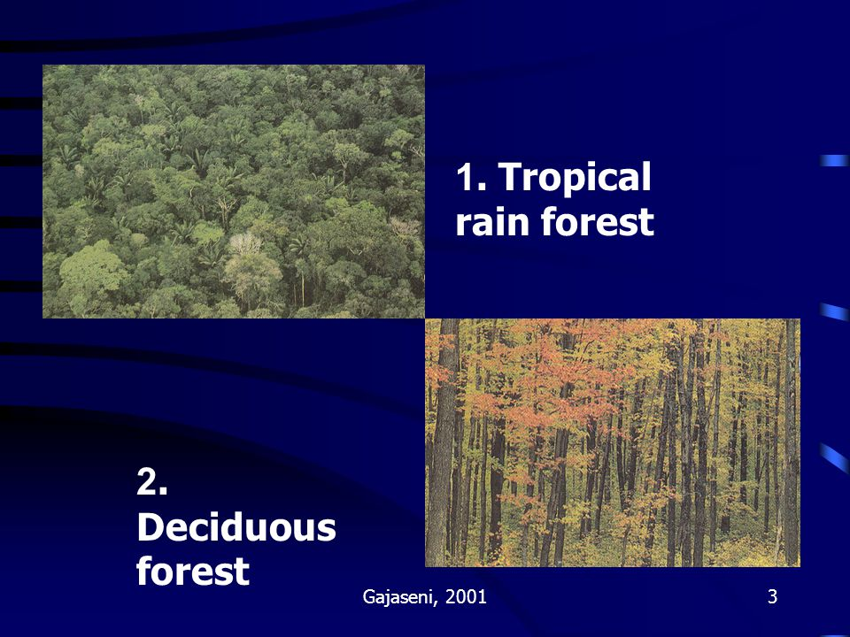 1. Tropical rain forest 2. Deciduous forest Gajaseni, 2001