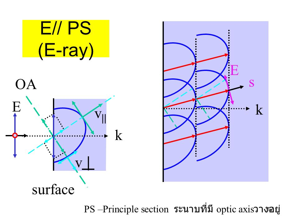 PS –Principle section ระนาบที่มี optic axisวางอยู่