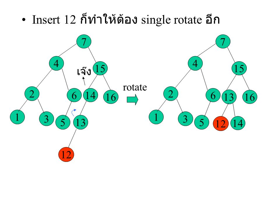 Insert 12 ก็ทำให้ต้อง single rotate อีก
