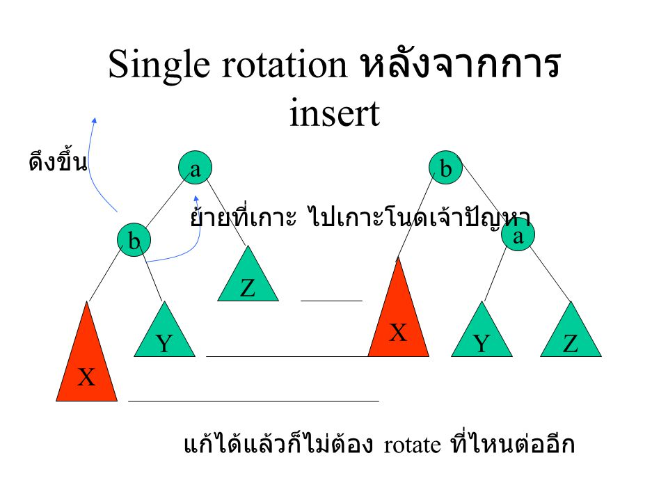 Single rotation หลังจากการ insert
