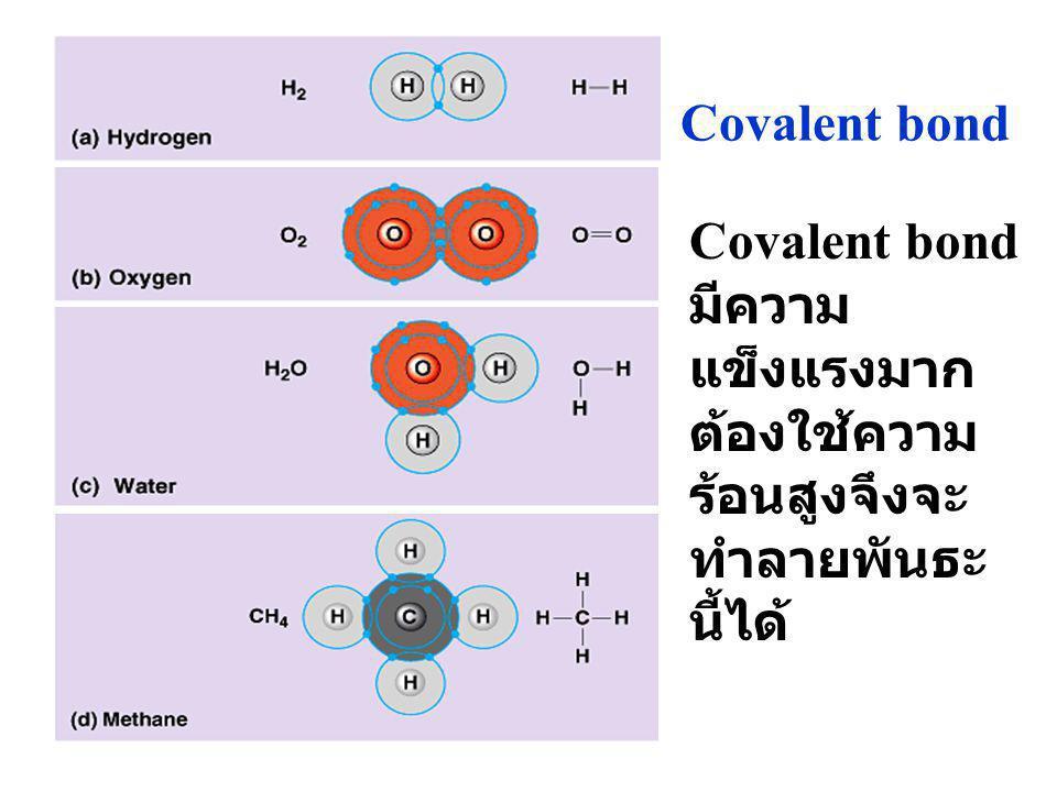 Covalent bond Covalent bond มีความแข็งแรงมาก ต้องใช้ความร้อนสูงจึงจะทำลายพันธะนี้ได้
