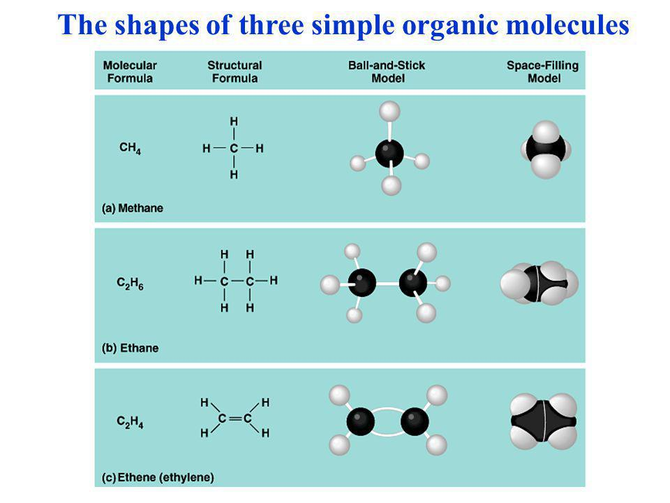 The shapes of three simple organic molecules