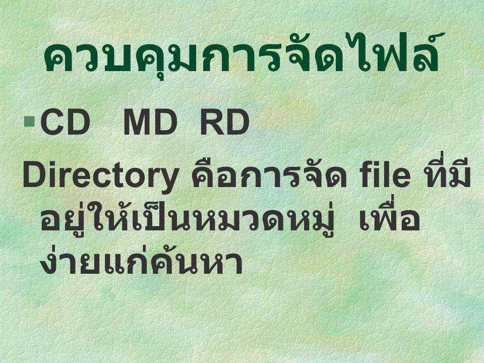 ควบคุมการจัดไฟล์ CD MD RD