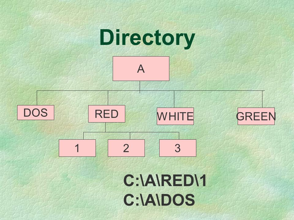 Directory A DOS RED WHITE GREEN 1 2 3 C:\A\RED\1 C:\A\DOS