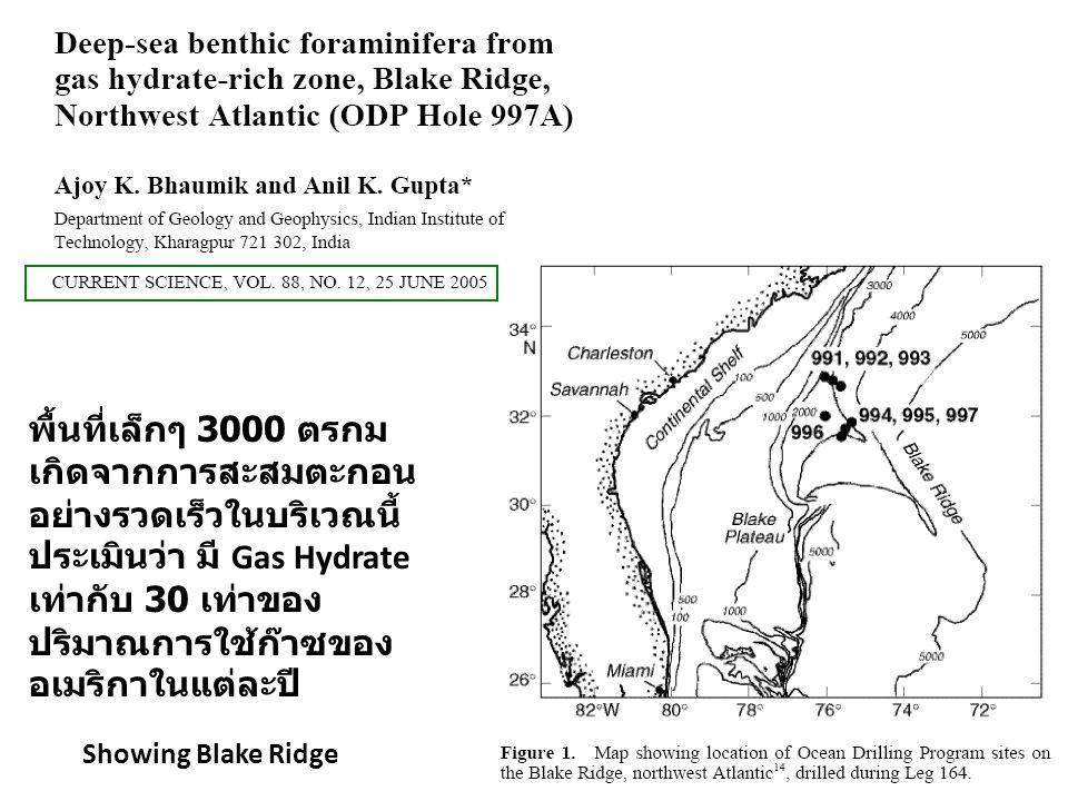 พื้นที่เล็กๆ 3000 ตรกม เกิดจากการสะสมตะกอนอย่างรวดเร็วในบริเวณนี้ ประเมินว่า มี Gas Hydrate เท่ากับ 30 เท่าของปริมาณการใช้ก๊าซของอเมริกาในแต่ละปี