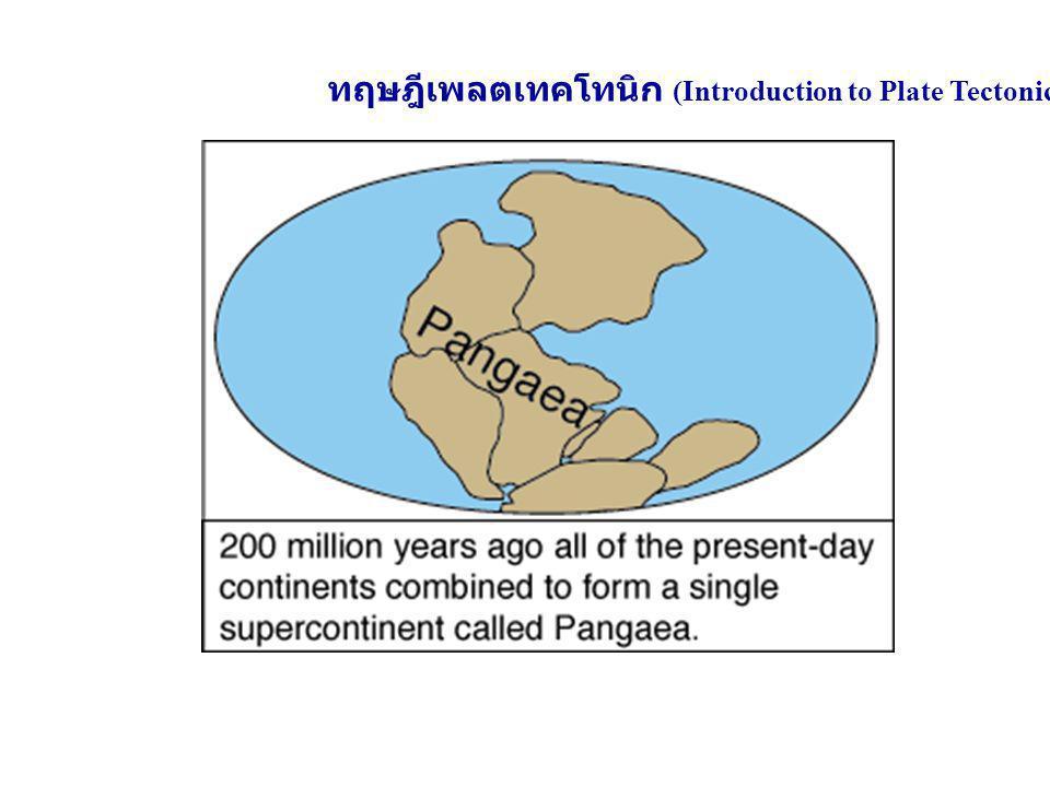 ทฤษฎีเพลตเทคโทนิก (Introduction to Plate Tectonic)