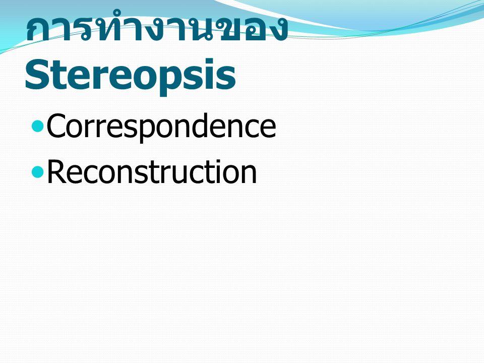 การทำงานของ Stereopsis