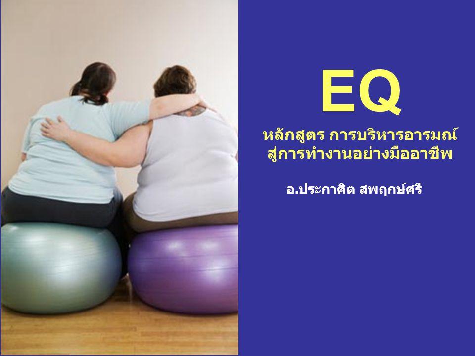 EQ หลักสูตร การบริหารอารมณ์ สู่การทำงานอย่างมืออาชีพ
