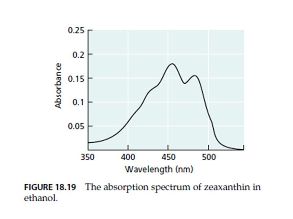 Absorption spectrum ของ zeaxanthin เป็นกราฟความสัมพันธ์ระหว่างชนิดแสงกับค่าการดูดกลืนแสง จากรูปแบบของเส้นกราฟจะเห็นว่า zeaxanthin มีค่าการดูดกลืนแสงสูงในช่วง 400-500 nm เช่นเดียวกับ action spectrum ของ blue-light response