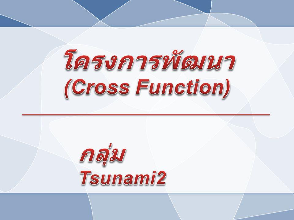 โครงการพัฒนา (Cross Function) กลุ่ม Tsunami2