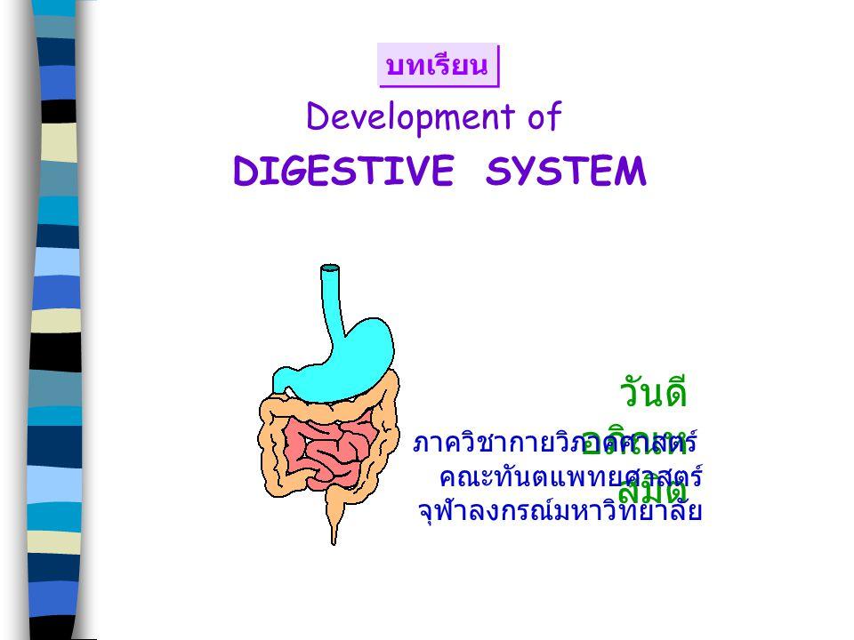 วันดี อภิณหสมิต DIGESTIVE SYSTEM Development of บทเรียน