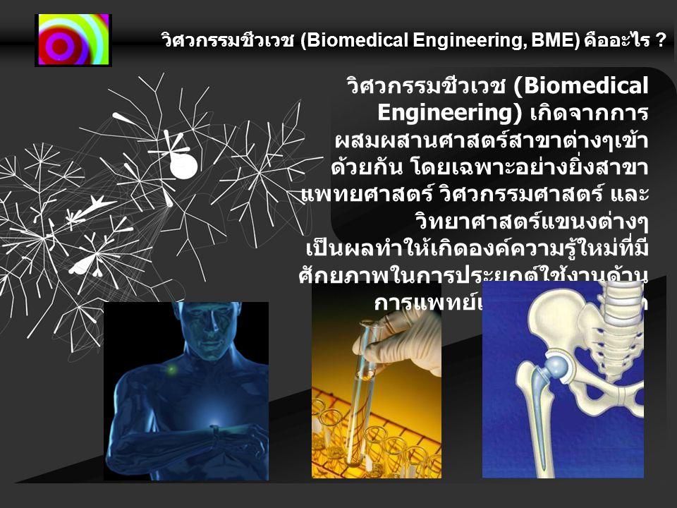 วิศวกรรมชีวเวช (Biomedical Engineering, BME) คืออะไร