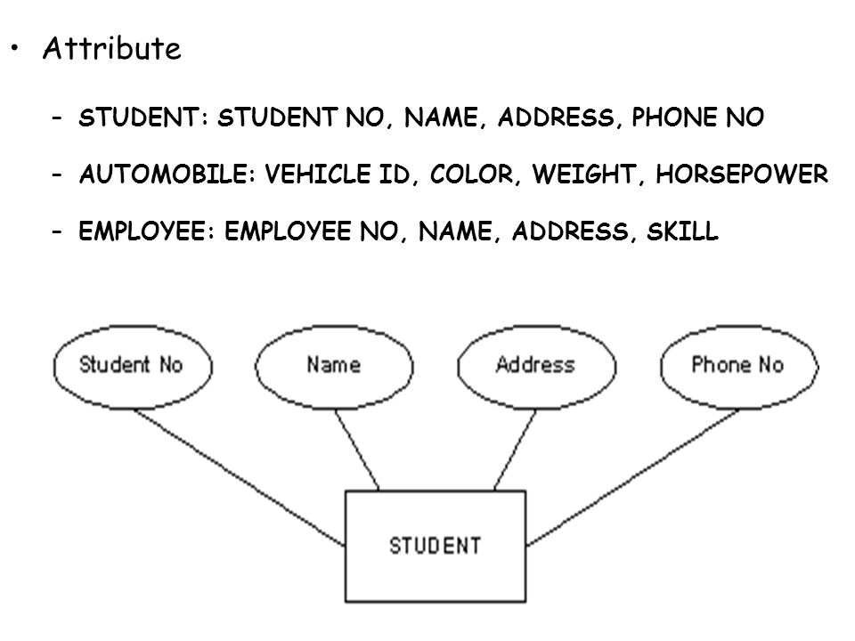 Attribute STUDENT: STUDENT NO, NAME, ADDRESS, PHONE NO. AUTOMOBILE: VEHICLE ID, COLOR, WEIGHT, HORSEPOWER.