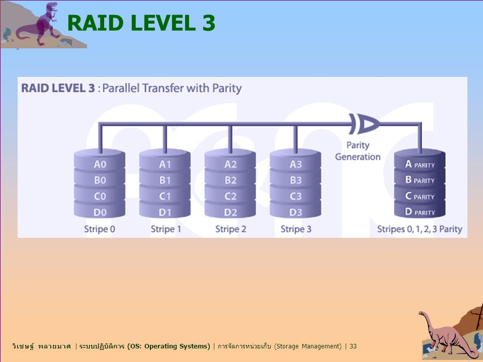 RAID LEVEL 3
