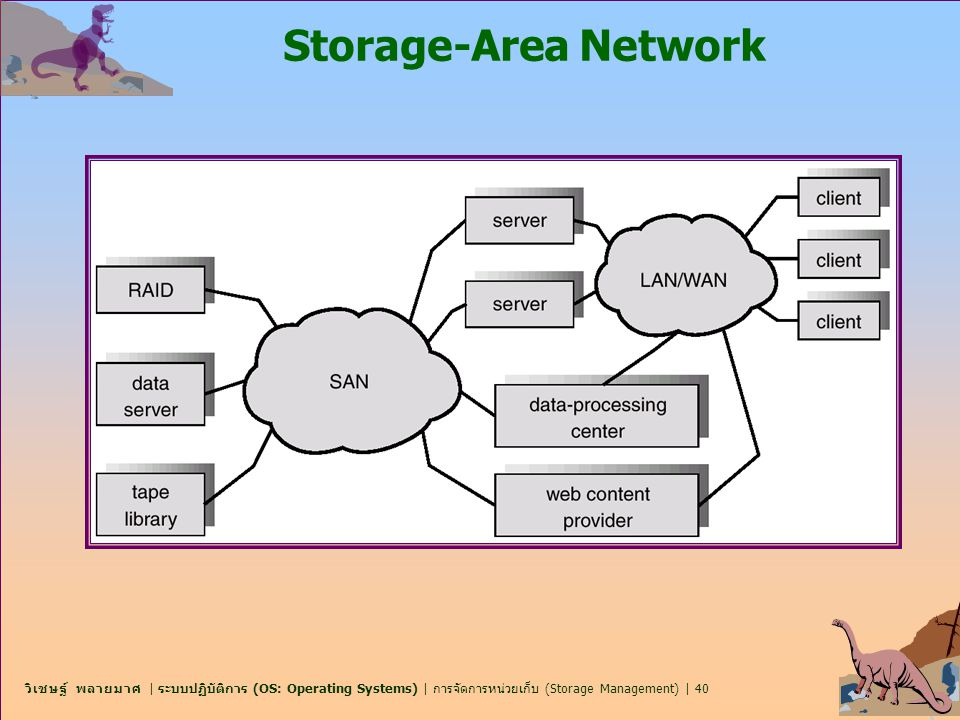 Storage-Area Network