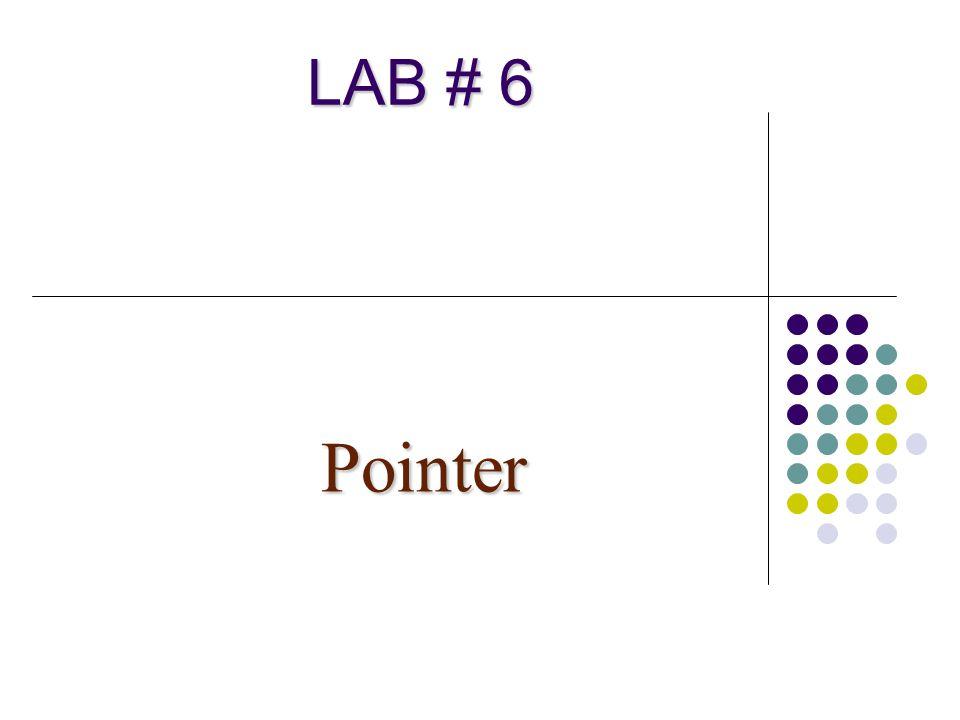 LAB # 6 Pointer