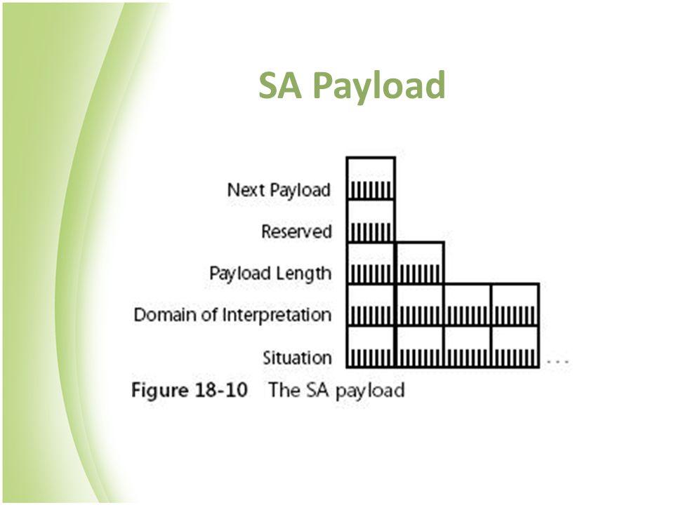 SA Payload