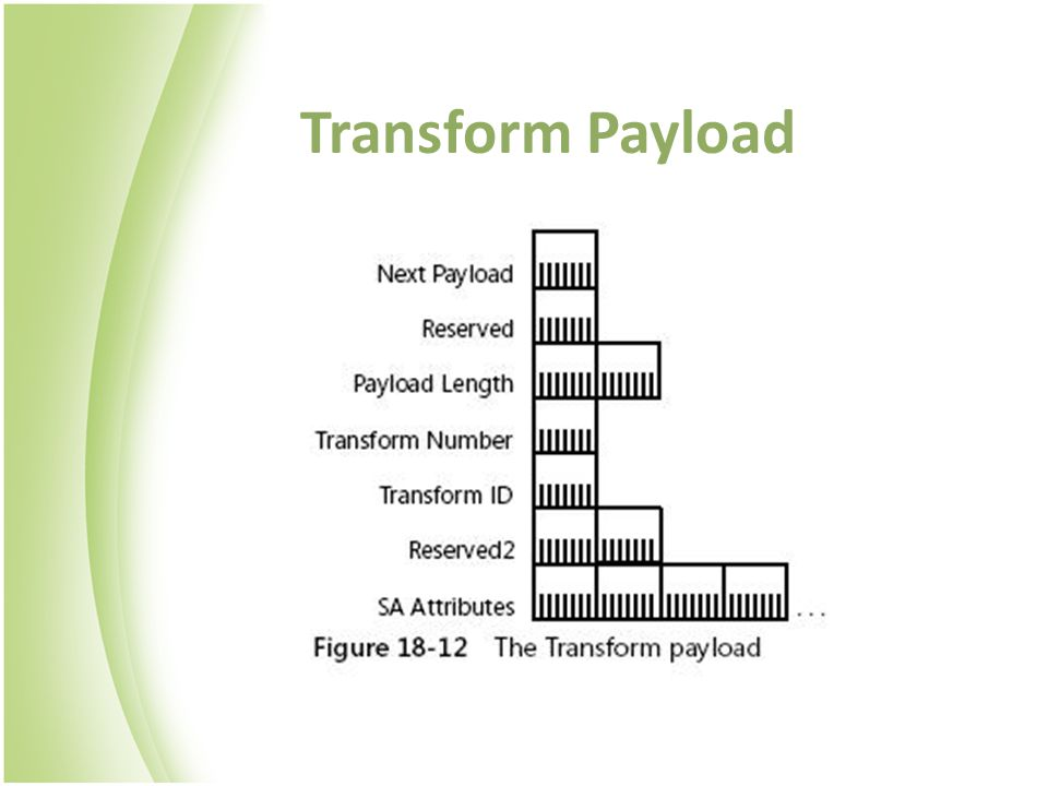 Transform Payload