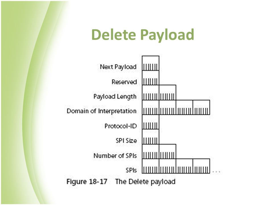 Delete Payload