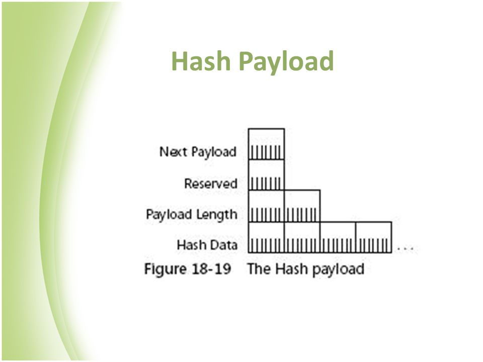 Hash Payload