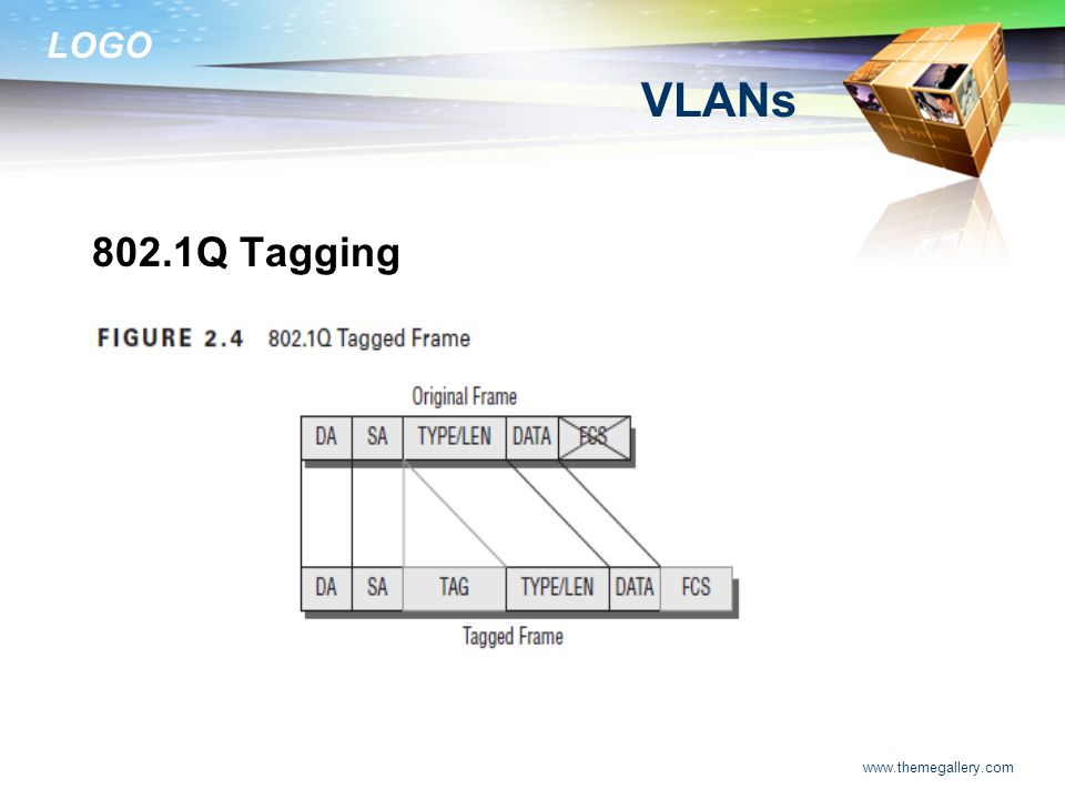 VLANs 802.1Q Tagging www.themegallery.com