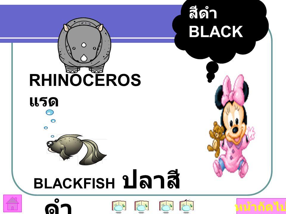 สีดำ BLACK RHINOCEROS แรด BLACKFISH ปลาสีดำ หน้าถัดไป