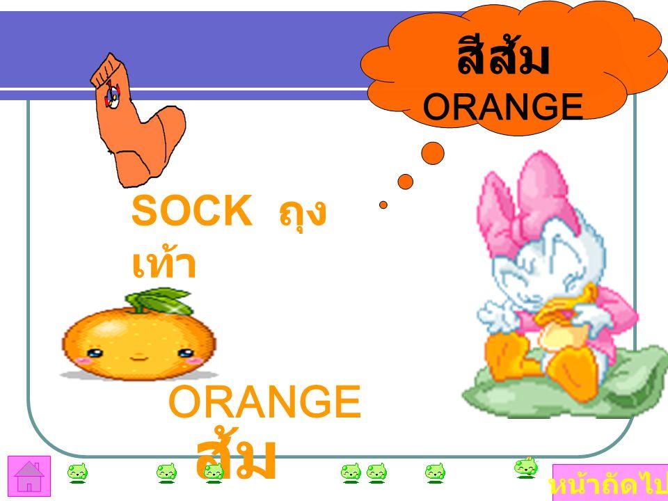 สีส้ม ORANGE SOCK ถุงเท้า ORANGE ส้ม หน้าถัดไป