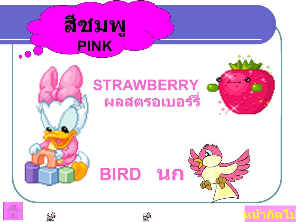 สีชมพู PINK STRAWBERRY ผลสตรอเบอร์รี่ BIRD นก หน้าถัดไป