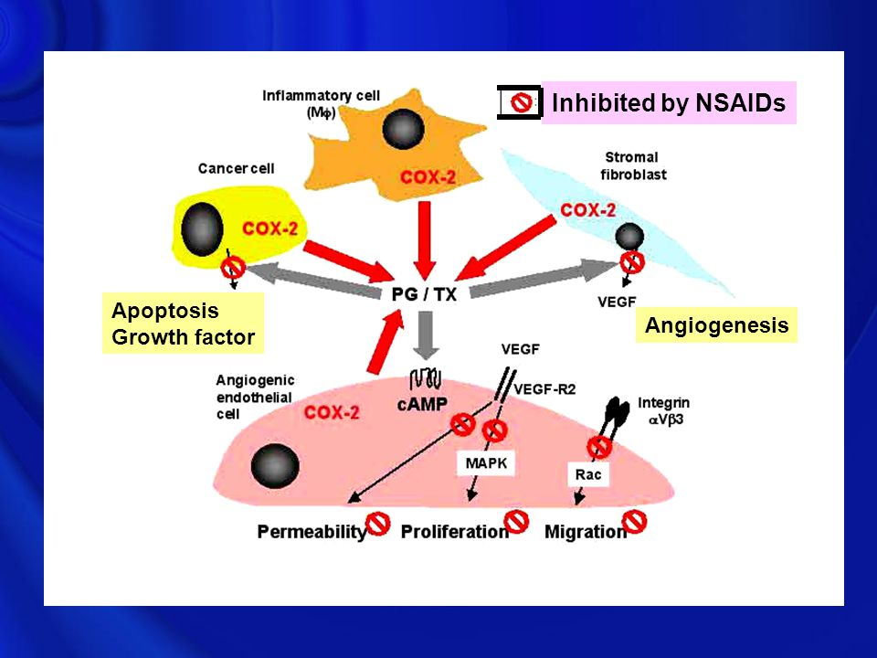 Inhibited by NSAIDs Apoptosis Growth factor Angiogenesis