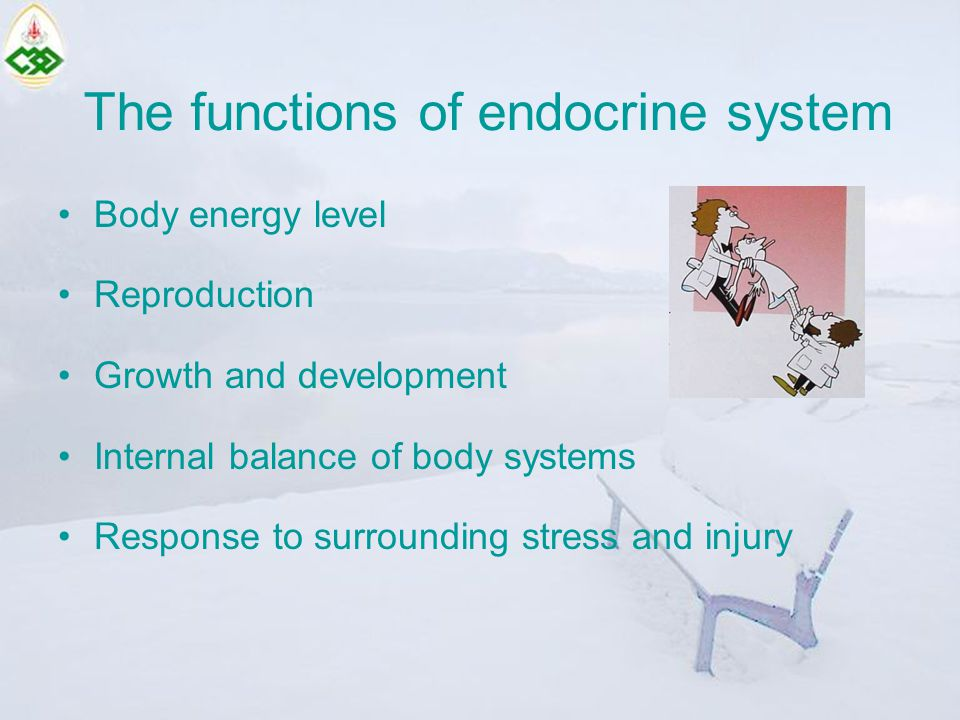 The functions of endocrine system