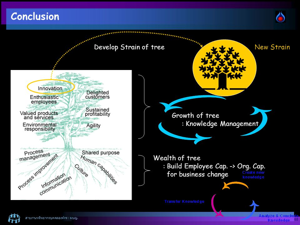 Conclusion Develop Strain of tree New Strain Growth of tree