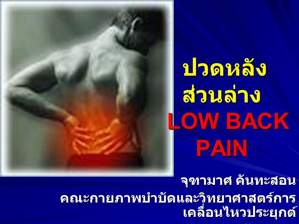 ปวดหลังส่วนล่าง LOW BACK PAIN