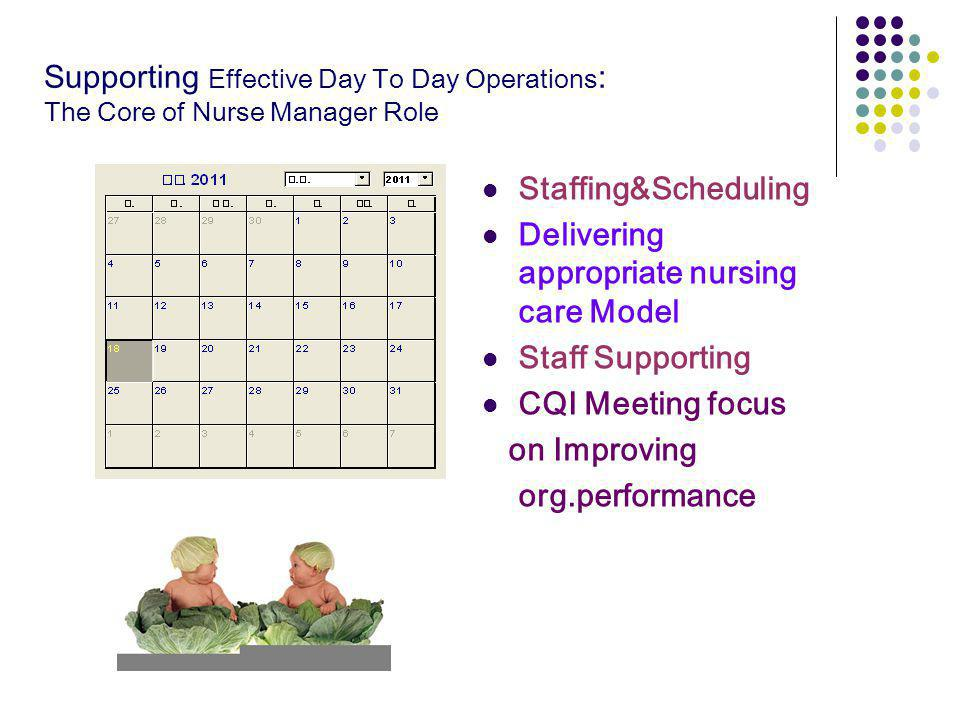 Supporting Effective Day To Day Operations: The Core of Nurse Manager Role