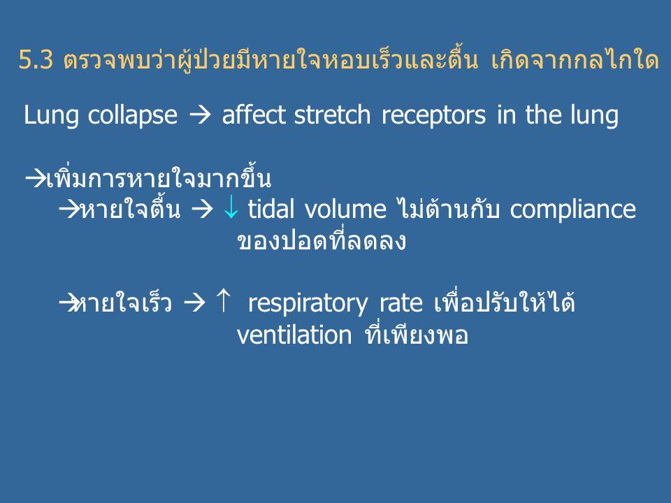 5.3 ตรวจพบว่าผู้ป่วยมีหายใจหอบเร็วและตื้น เกิดจากกลไกใด