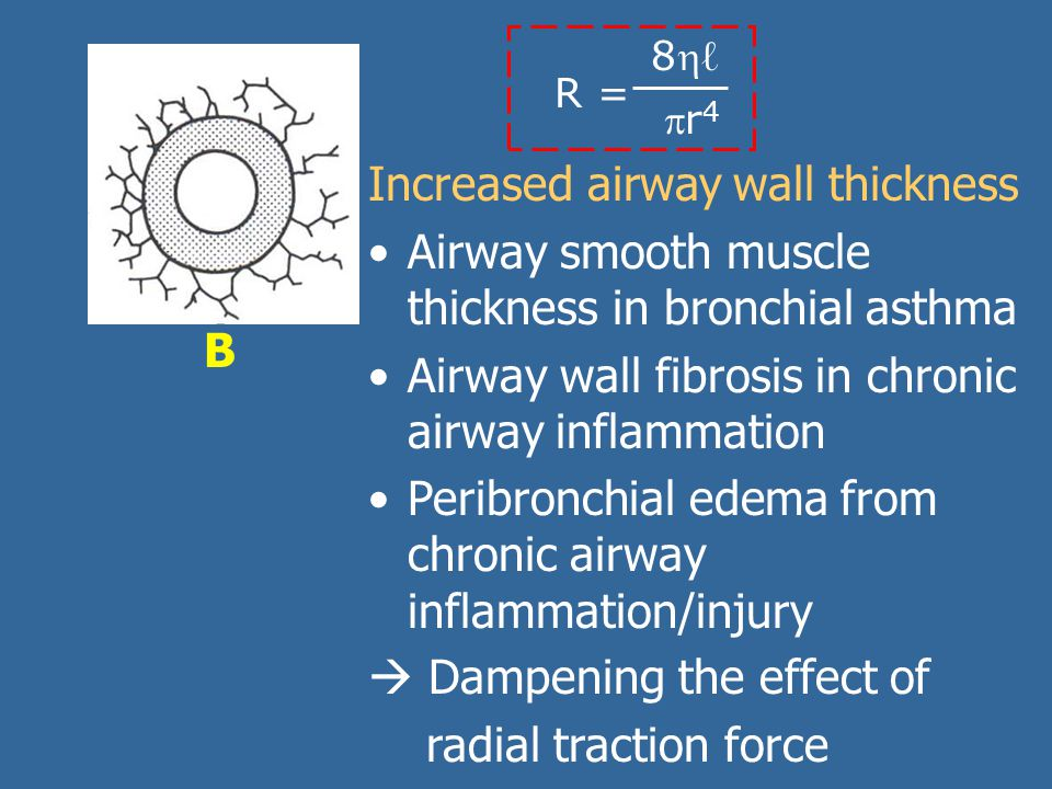 Increased airway wall thickness