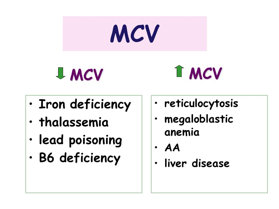 MCV MCV MCV Iron deficiency thalassemia lead poisoning B6 deficiency