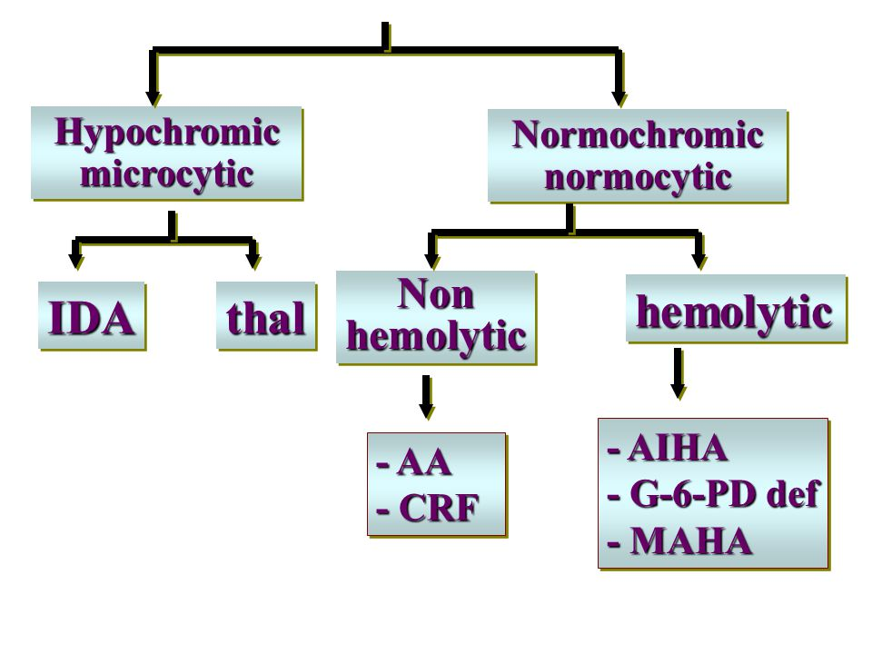 Hypochromic microcytic Normochromic normocytic