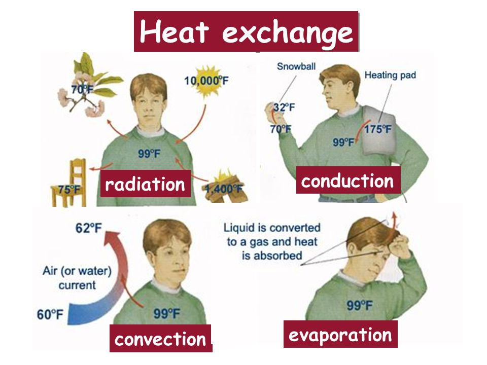 Heat exchange radiation conduction evaporation convection