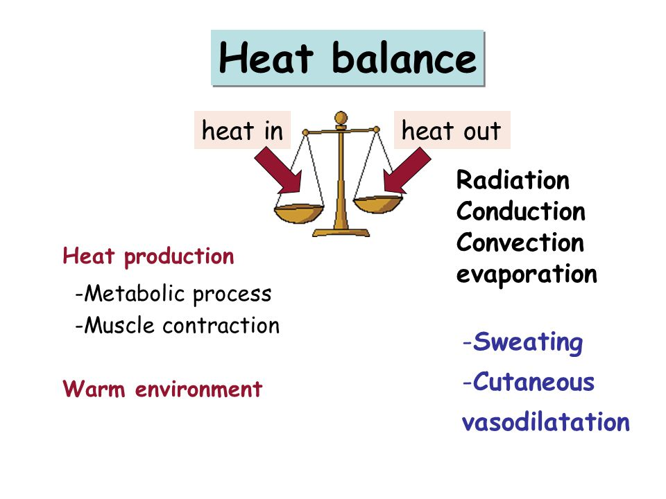Heat balance heat in heat out Radiation Conduction Convection