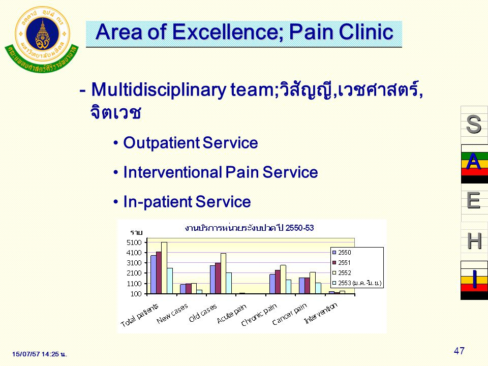 Area of Excellence; Pain Clinic