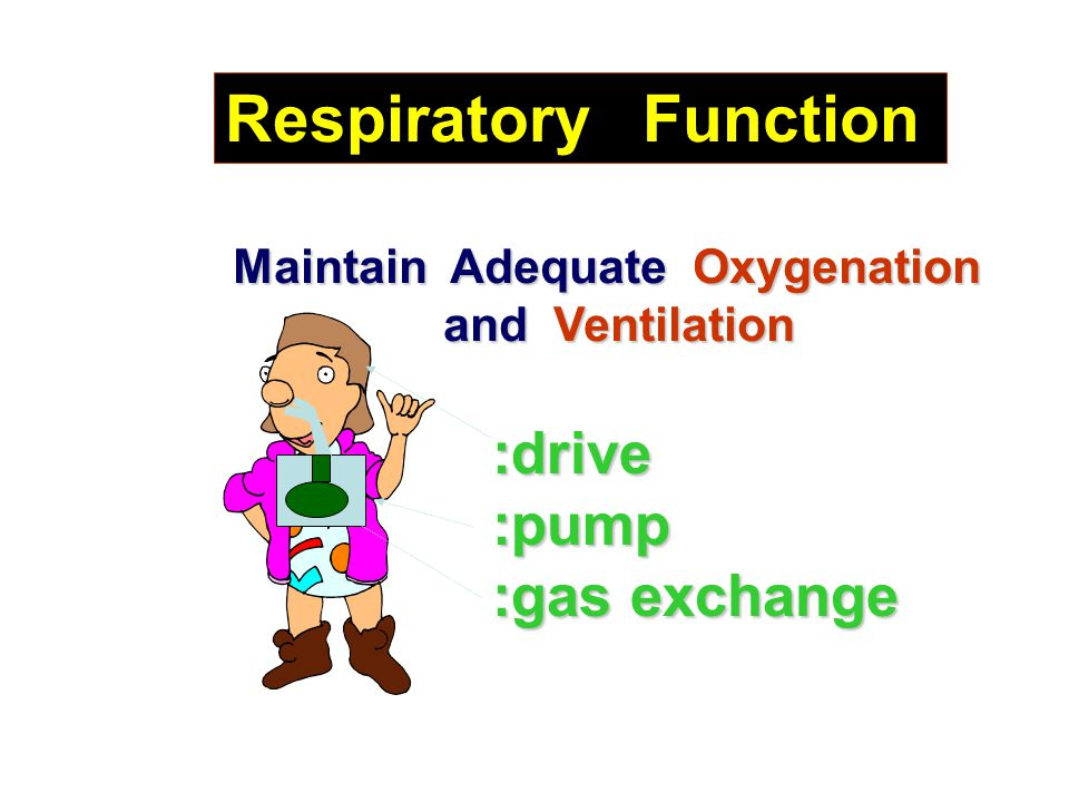Maintain Adequate Oxygenation