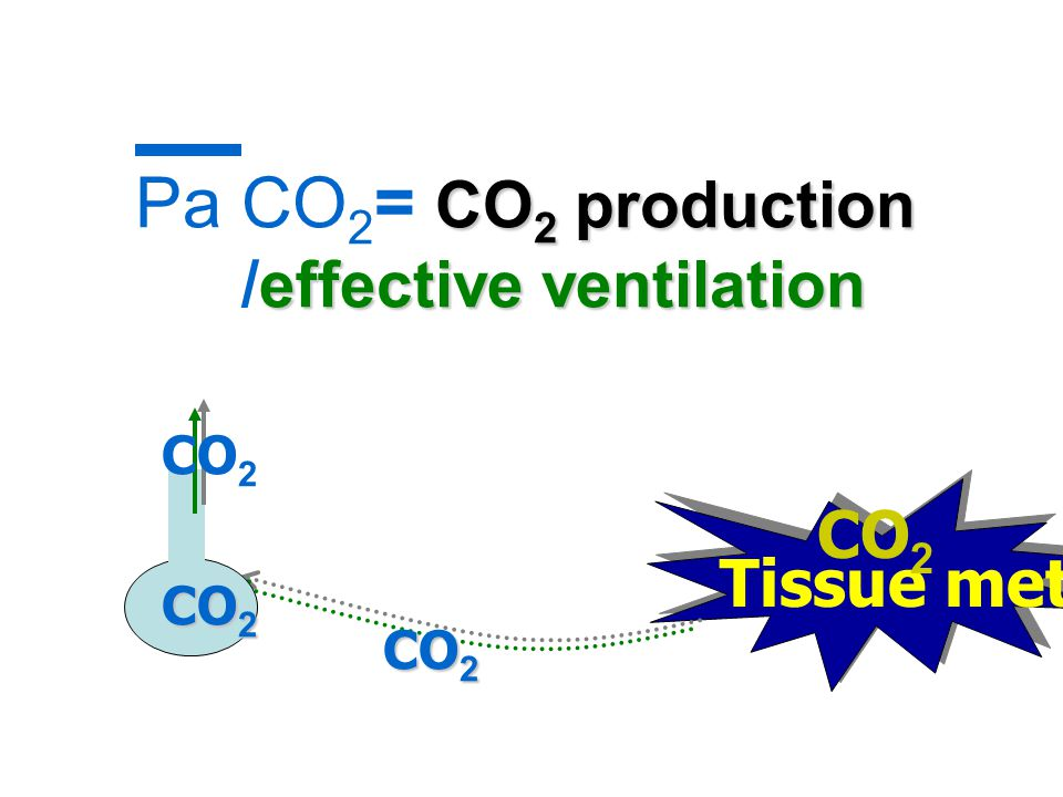 Pa CO2= CO2 production /effective ventilation