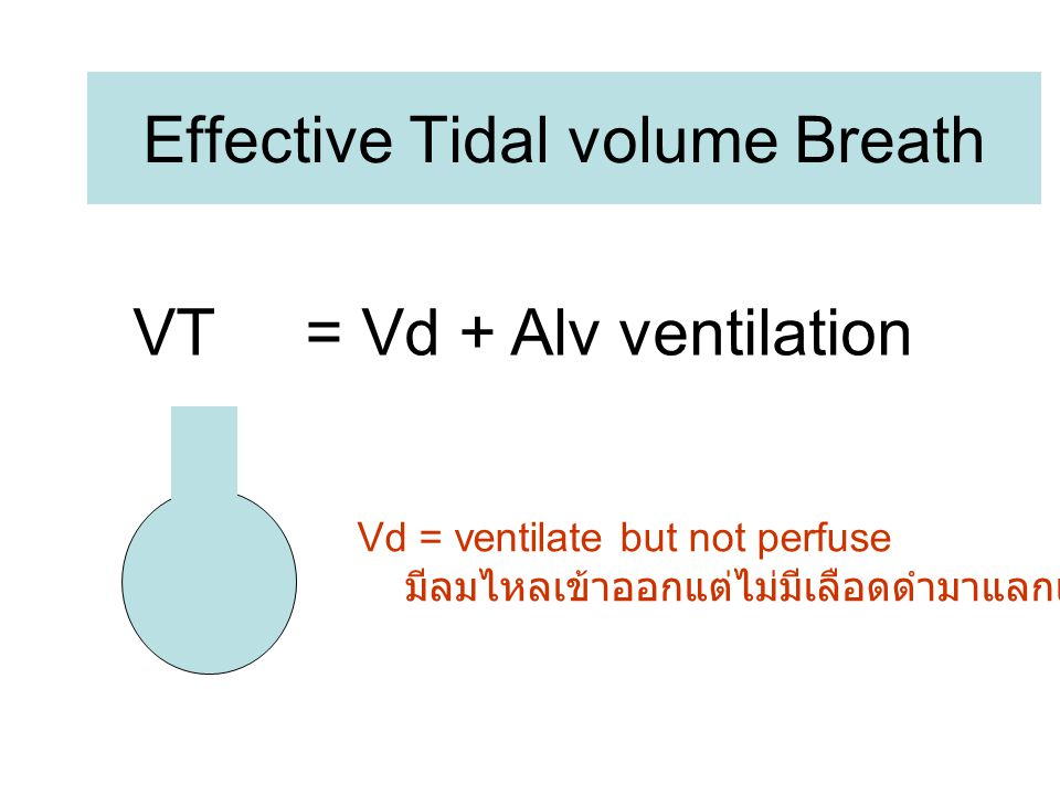 Effective Tidal volume Breath