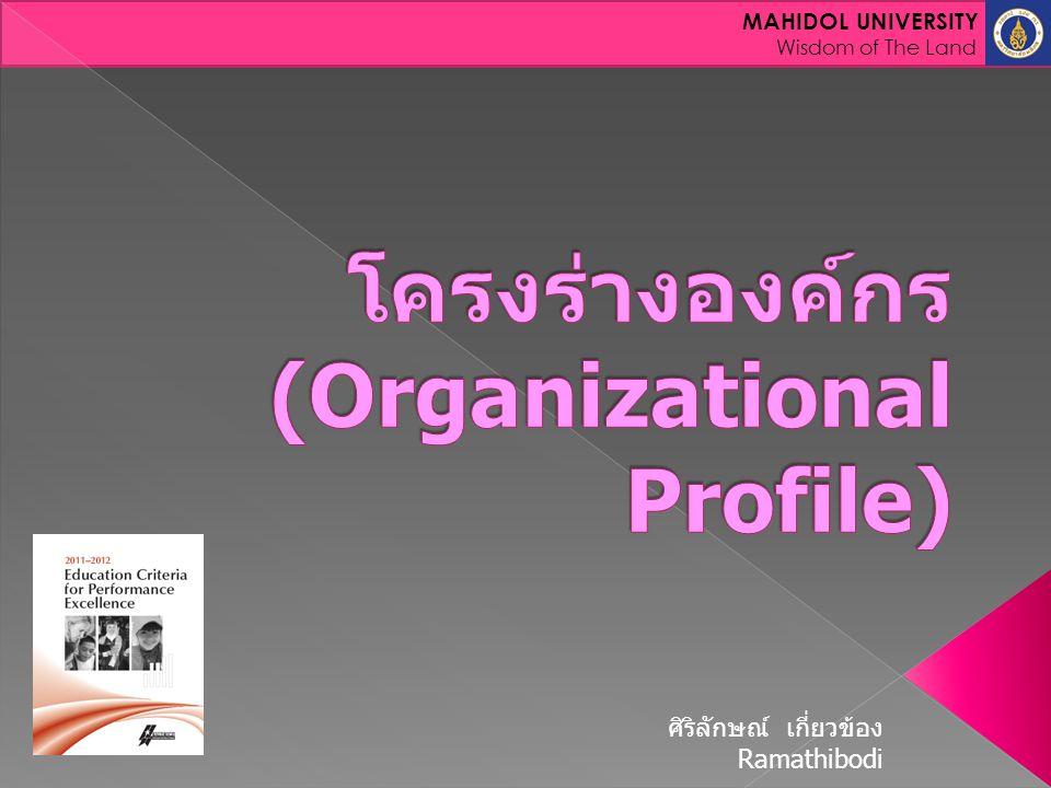 โครงร่างองค์กร (Organizational Profile)