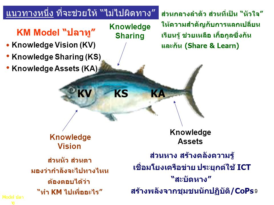KM Model ปลาทู KV KS KA แนวทางหนึ่ง ที่จะช่วยให้ ไม่ไปผิดทาง